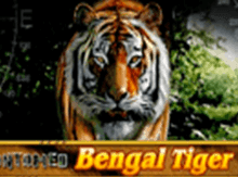 Бесплатный Untamed Bengal Tiger в Вулкан Вегас